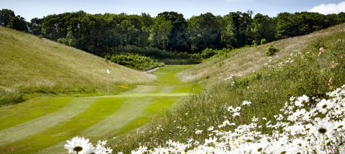 6th Hole, Royston Golf Club